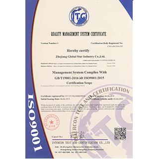 ISO 9001(英文版)
