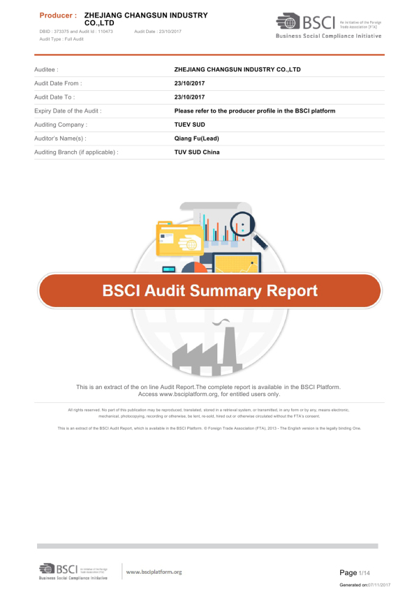 BSCI Audit Summary Report