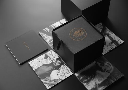 纸质包装-显容-05