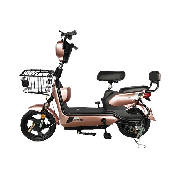 电动自行车 宾利