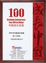中國最具成長力民營企業100強