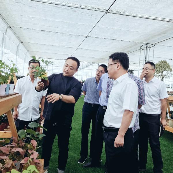 市委书记金政莅临【智慧创艺】农业综合体项目现场体验指导