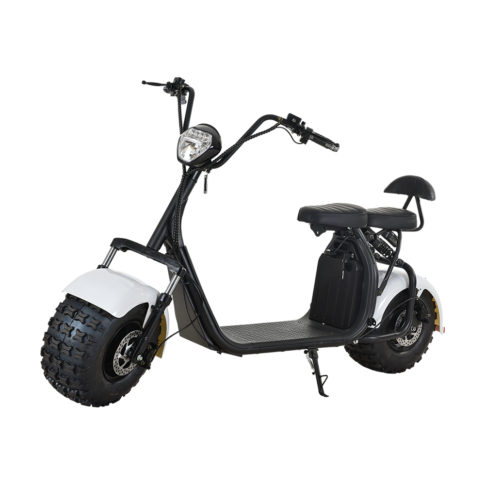 Electric scooter HL-001