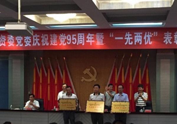 """三亚信投党支部荣获2015-2016年度""""先进基层党组织""""称号"""