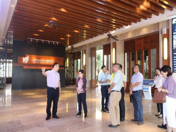 市政协走进三亚云港, 调研信息产业和园区企业发展情况