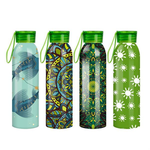 750ml portable aluminum water bottle  WJ-750A-SL