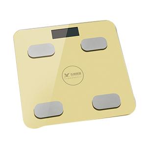 體重秤YZ-1600-(4)