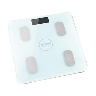體重秤YZ-1600-(2)