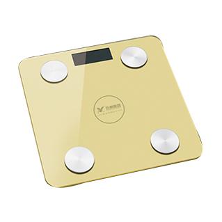 體重秤 YZ-1600-(3)