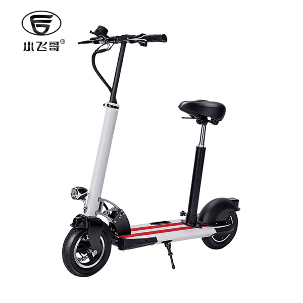 Electric Scooter QX-1001